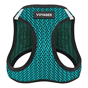 Best Pet Supplies Voyager All Weather No Pull Step-in Mesh Dog Harness with Padded Vest, Turquoise, X-Small