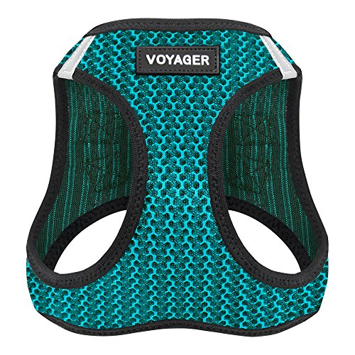 Best Pet Supplies Voyager All Weather No Pull Step-in Mesh Dog Harness with Padded Vest, Turquoise, Medium - Dog Vest Sweater