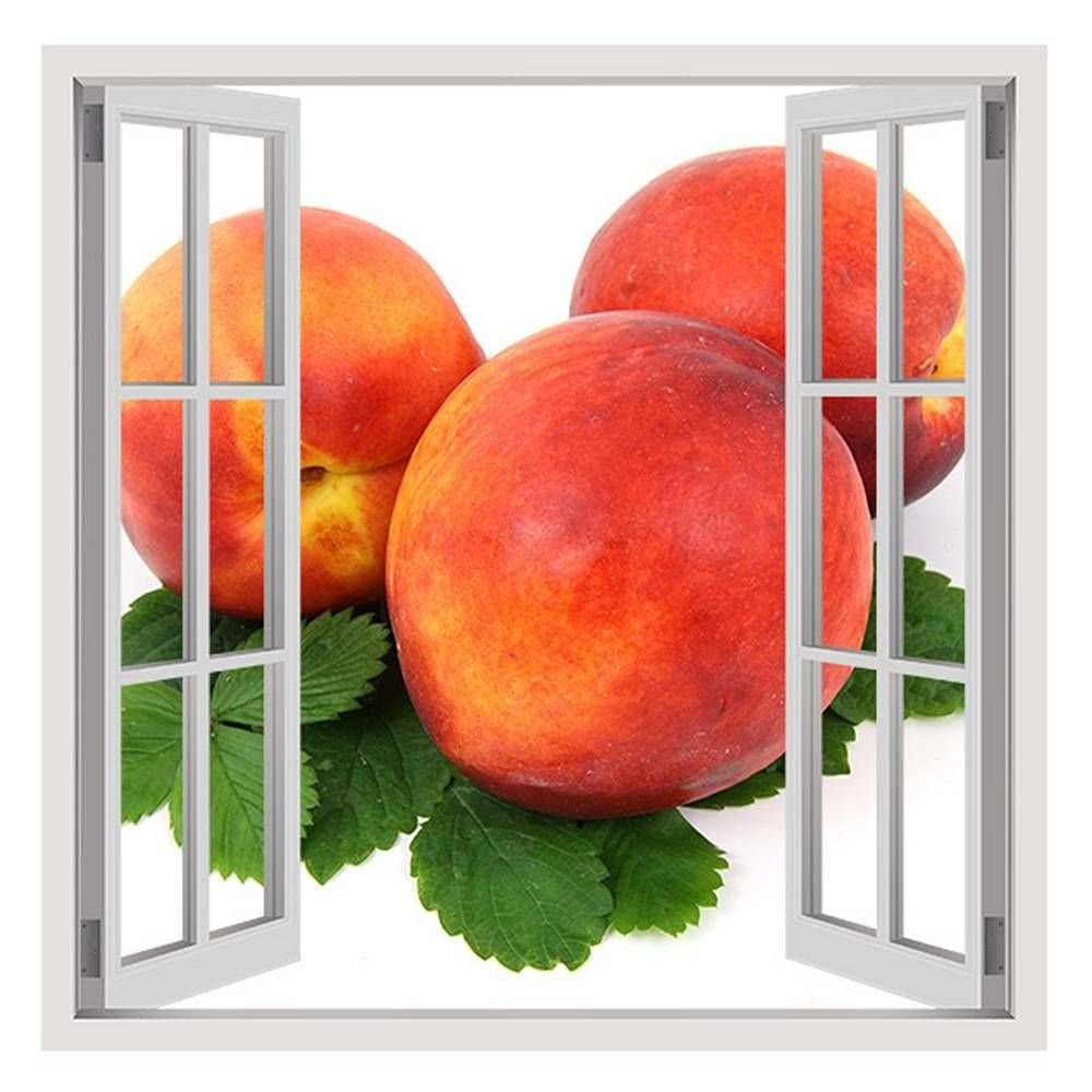 Alonline Art - Organic Nectarine Fake 3D Window Framed Stretched Canvas (100% Cotton) Gallery Wrapped - Ready to Hang | 32''x32'' - 81x81cm | Giclee Framed Artwork for Living Room for Bedroom