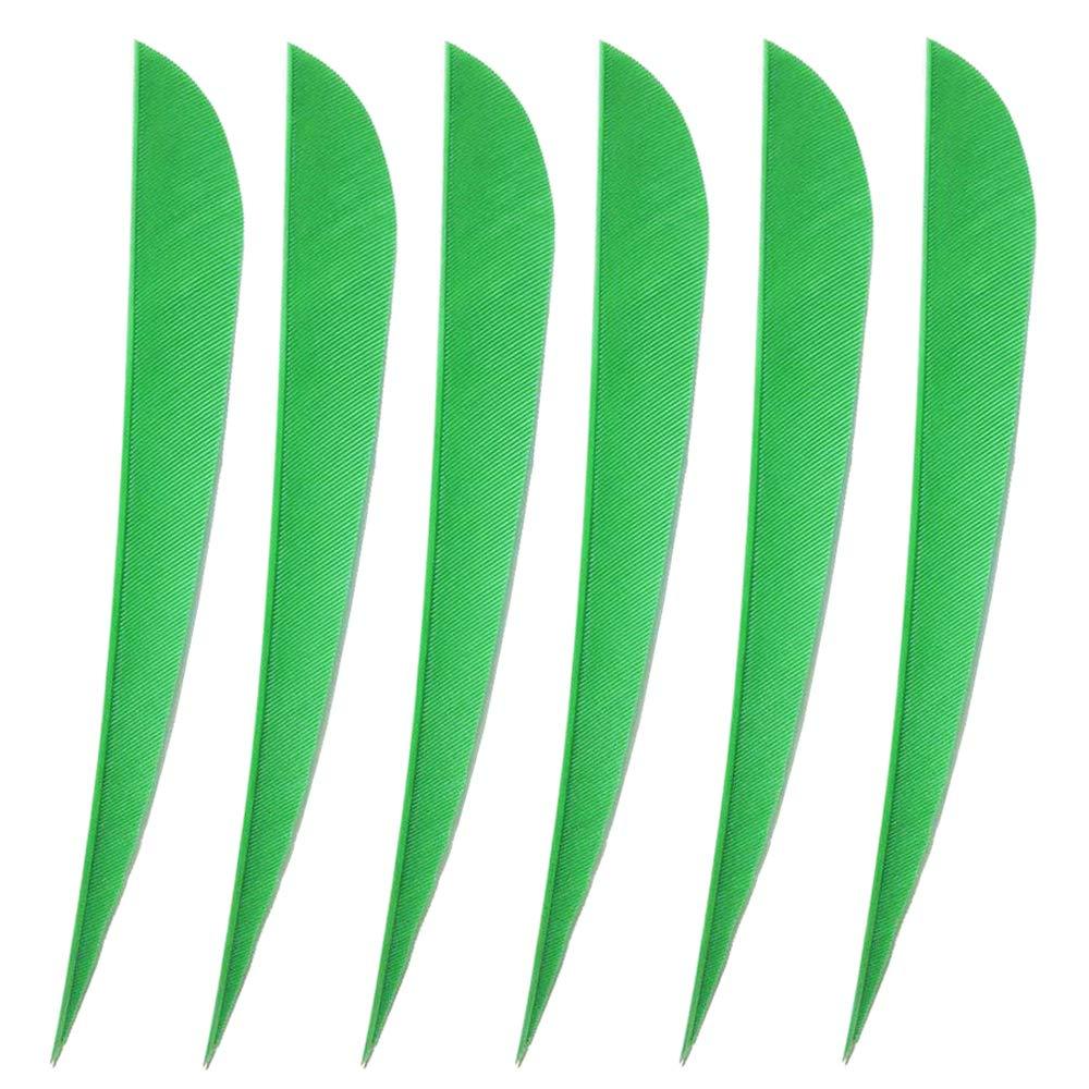WEREWOLVES Plumes de fl/èche 3 4 5 Plume de Dinde Fl/èche Fletches Plume Peltate Forme de Goutte de laile Droite aubes Naturelles pour fl/èches DIY