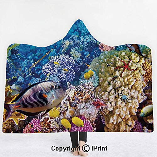 "Fish 3D Print Soft Hooded Blanket Boys Girls Premium Throw Blanket,Egyptian Red Sea Bottom View with Marine Creatures Top of Tribal Ocean Scuba Image,Lightweight Microfiber(Kids 50""x60"") Multicolor ()"