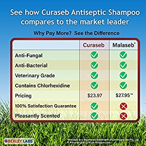 Curaseb Antifungal & Antibacterial Chlorhexidine Shampoo for Dogs & Cats w/ Ketoconazole & Aloe, Effective Against Ringworm, Pyoderma & Allergies, #1 Vet Antifungal Dog Shampoo, Satisfaction Guarantee