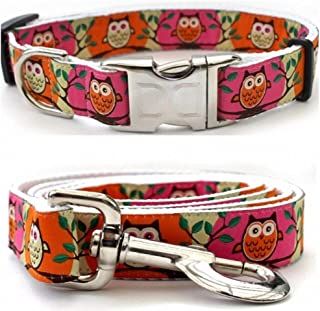 "product image for Diva-Dog 'H'Owl' Custom Small Dog 5/8"" Wide Pink & Pumpkin Dog Collar with Plain or Engraved Buckle, Matching Leash Available - Teacup, XS/S"