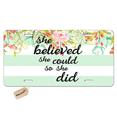 Amcove She Believed She Could Mint Stripe License Plate - Inspirational Quote Vanity Metal Novelty License Plate Tag Sign,6 X 12 Inch: Automotive