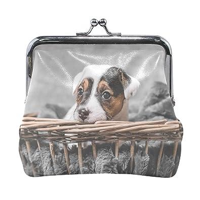 Amazon.com: Terrier - Monedero para mujer, con cierre doble ...