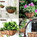 2 Pack Metal Hanging Planter Basket with Coco Coir