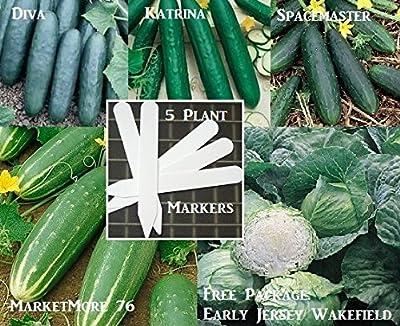 Bulk 4 Cucumber Seeds Survival Seeds 500 Seeds Upc 646263360729 + 5 Plant Markers