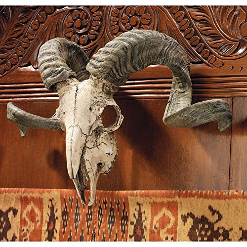 Design Toscano Corsican Ram Skull and Horns Wall Sculpture Faux Taxidermy Animal, 18 Inch, Polyresin, Full Color for $<!--$89.95-->