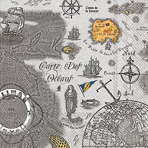 Ideal Home Range 20 Count Carte Des Oceans Grey Paper Luncheon Napkins (Luncheon Party Pirate Napkins)
