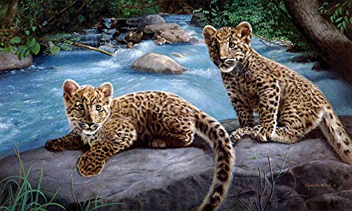 The Period A0374 Natural Scenery River Animals Leopard. (20x30Inch)Only Canvas Oil Painting Home decoration Living Room bedroom (Frameless)
