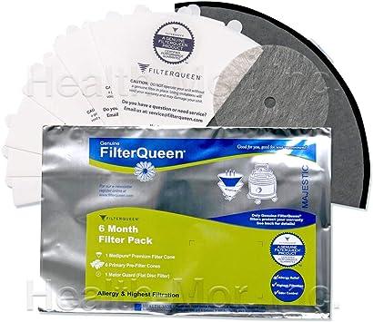 Filter Queen 6 Month Filter Cone Bundle by Filter Queen: Amazon.es: Hogar