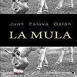 La mula [The Mule] | Juan Eslava Galán