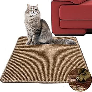 Amazon Com Carpet Scratch Stopper 30 Stop Cats From