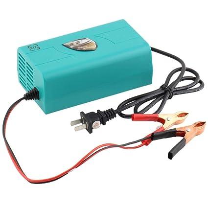 Formulaioue 12V Auto Cargador de Batería de Coche Cargador ...