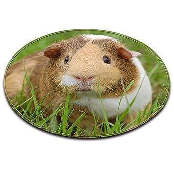 LB Haustiere Meerschweinchen grünes Gras Badematte Runde Bereich ...