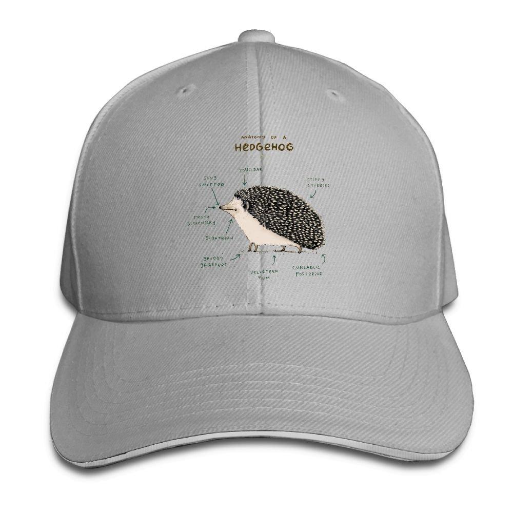 Amazon Foookl Anatomy Of A Hedgehog Cap Unisex Low Profile