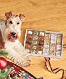 Cheap Dog Treats 75-Pc.Gourmet Gift Box with Decorated Cookies by Lakeside Collection