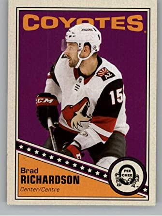 Brad Richardson Arizona Coyotes Player Swingman Jersey