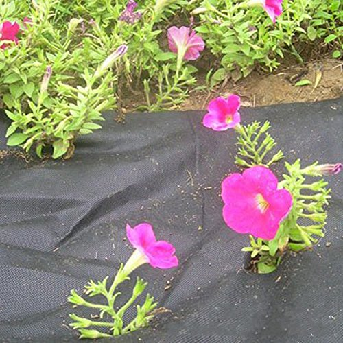 OriginA 2.3 Oz Premium Weed Control Fabric Ground Cover Weed Barrier Eco-Friendly for Vegetable Garden Landscape,Non Woven Fabric, 6x200ft, Black by OriginA (Image #3)