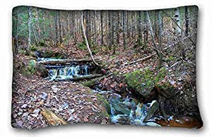 Soft Pillow Case Cover Nature Custom Cotton & Polyester Soft Rectangle Pillow Case Cover 20x30 inches (One Side) suitable for Twin-bed