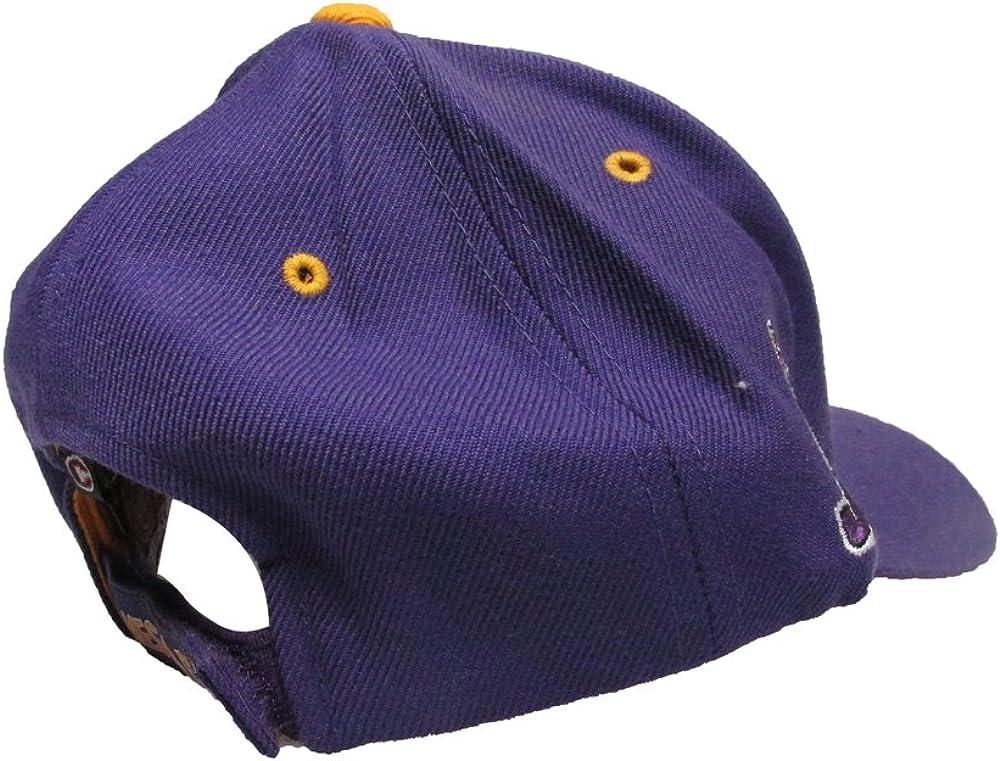 James Madison University Dukes College Team Strap Back Dad Hat Cap