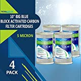 10 whole house water filter - Big Blue CTO Carbon Block Water Filters 4.5