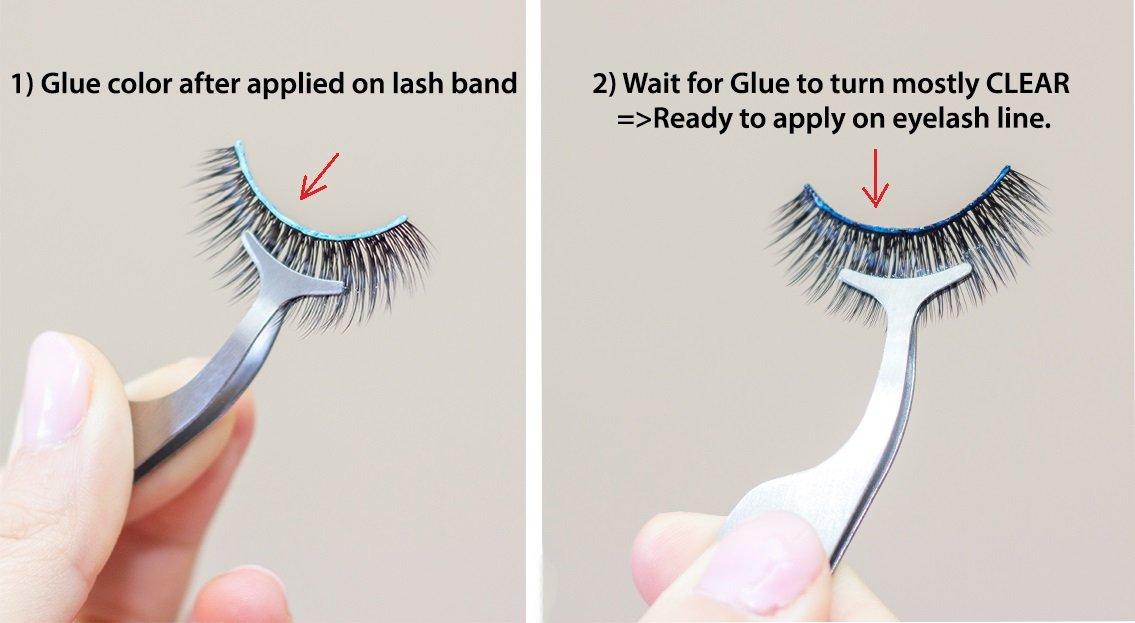 Amazon Lashxo Eyelash Adhesive 2 Bottlesbrush On Latex Free