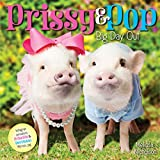 Prissy & Pop: Big Day Out