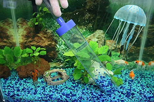 Best fish tank siphon vacuum for 2019