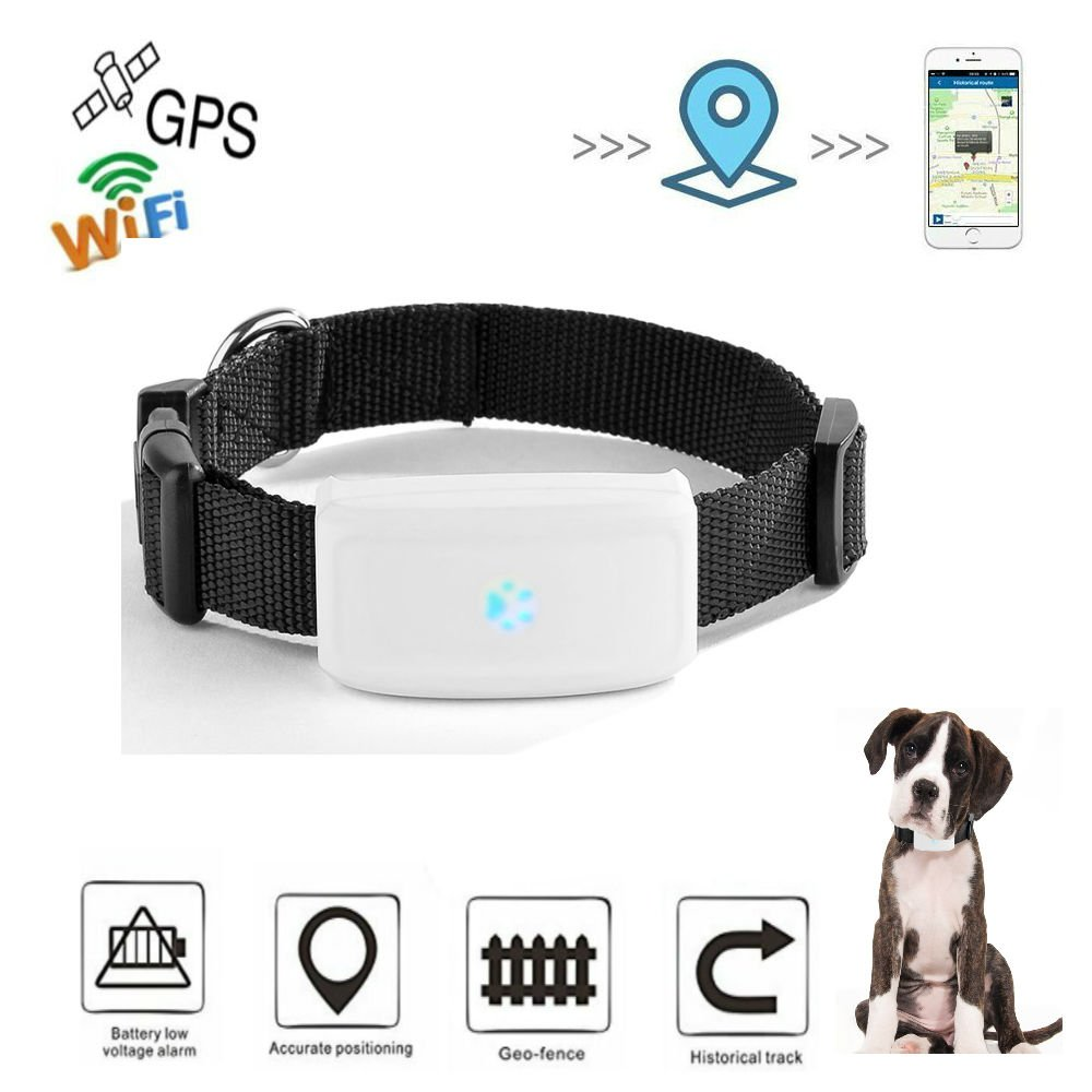 Gps Dog Tracker,Mini GPS Tracker,Hangang Pet Gps Tracker, Gps Pet Tracker Anti-lost GPS Locating Pet Tracker Collar Activity Monitor Tracking in Real Time Free App Smart Cat Tracker Collar For Dog Cat Gps Location Tracker Support Android Ios TK911 CS911