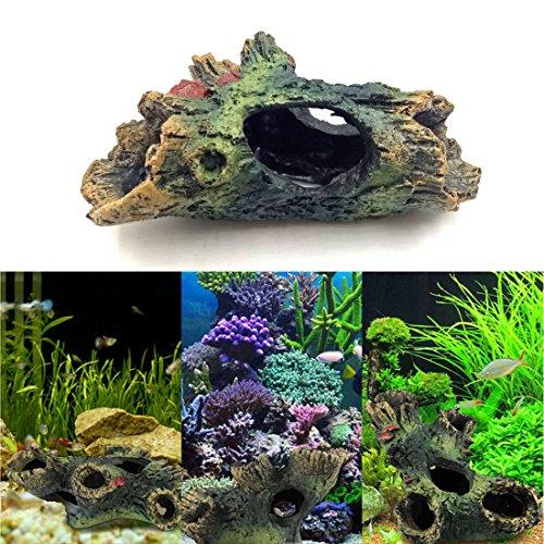 g Betta Aquarium Decor ()