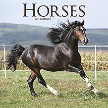 Horse Calendar - Calendars 2017 - 2018 Wall Calendars - Animal Calendar - Horses 16 Month Wall Calendar by Avonside