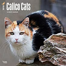 Calico Cats 2018 12 x 12 Inch Monthly Square Wall Calendar
