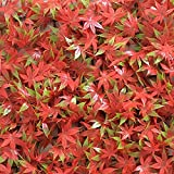 Porpora 24-Piece Artificial Hedge Plant, Greenery Panels Suitable for Both Outdoor or Indoor use, Garden, Backyard and/or Home Decorations Red Maple