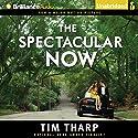 The Spectacular Now Hörbuch von Tim Tharp Gesprochen von: MacLeod Andrews