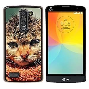 For LG L Bello L Prime D337 - Pissed Angry Cat Ferocious /Modelo de la piel protectora de la cubierta del caso/ - Super Marley Shop -