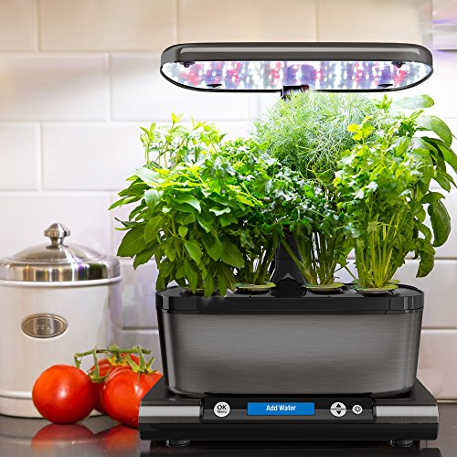 Aerogarden harvest elite with gourmet herb seed pod kit for Aero garden com