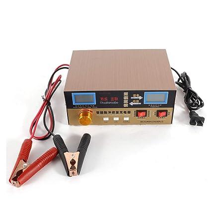 Amazon.com: SHZICMY Cargador de batería de coche, 12/24V ...