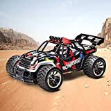 RC Car, Remote Control Car Racing Buggy Car, 1:16 Scale 2WD 2.4Ghz Electric High Speed RC Truck Off Road Vehicle