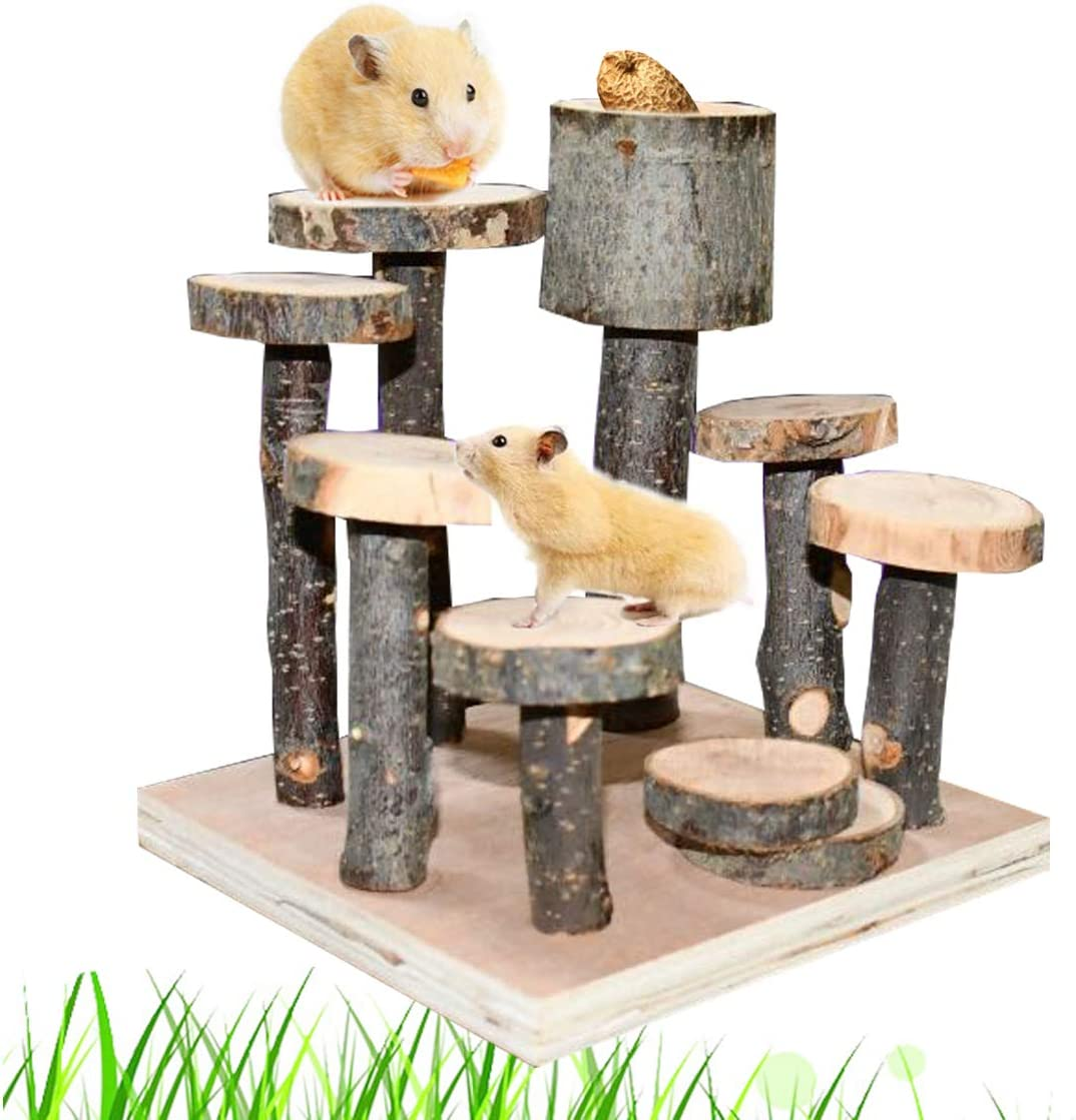 CooShou Hamster Wood Playground Toy Apple Wood Chewing Toys Hamster Steps Stairs Climbing Toys with Feeder for Small Animals Sugar Glider Chinchilla Guinea-Pigs