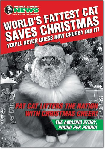 Story Christmas Card - 12 'Fat Cat Christmas' Boxed Christmas Cards with Envelopes (4.75 x 6.625 Inch), Hilarious Santa Claus Kitty Cat Christmas Notes, Funny Tabby Holiday Notes, Humorous Christmas Stationery B1361