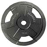 Champion Barbell Olympic Grip Plate (25-Pound) For Sale