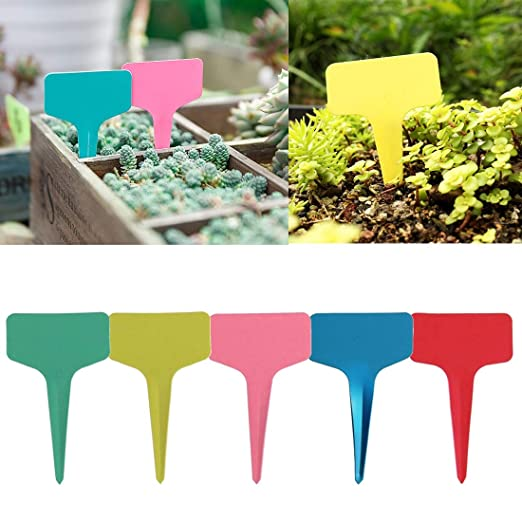 qianzhi 100Pcs Etiquetas De Plantas De Plástico Reutilizables ...