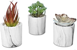 Artificial Succulent Plants Potted Faux Succulents Fake Plants Decor Set of 3 Face Succulent Plants in Pots (Small, Marblelike Paper Pot)