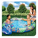 Best Banzai Kiddie Pools - Banzai Beach Buddy Hippo Kiddie Pool with Built Review