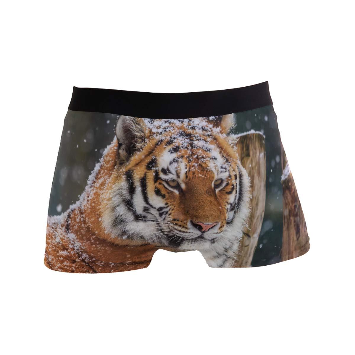 Mens Underwear Tiger Boys Boxer Brief