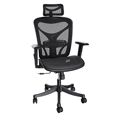 ANCHEER Ergonomic Office Chair