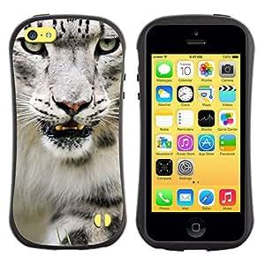 Suave TPU GEL Carcasa Funda Silicona Blando Estuche Caso de protección (para) Apple Iphone 5C / CECELL Phone case / / Angry Roar Leopard Snow White Furry /