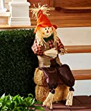 "The Lakeside Collection Harvest Gatherings 36"" Sitting Scarecrow"