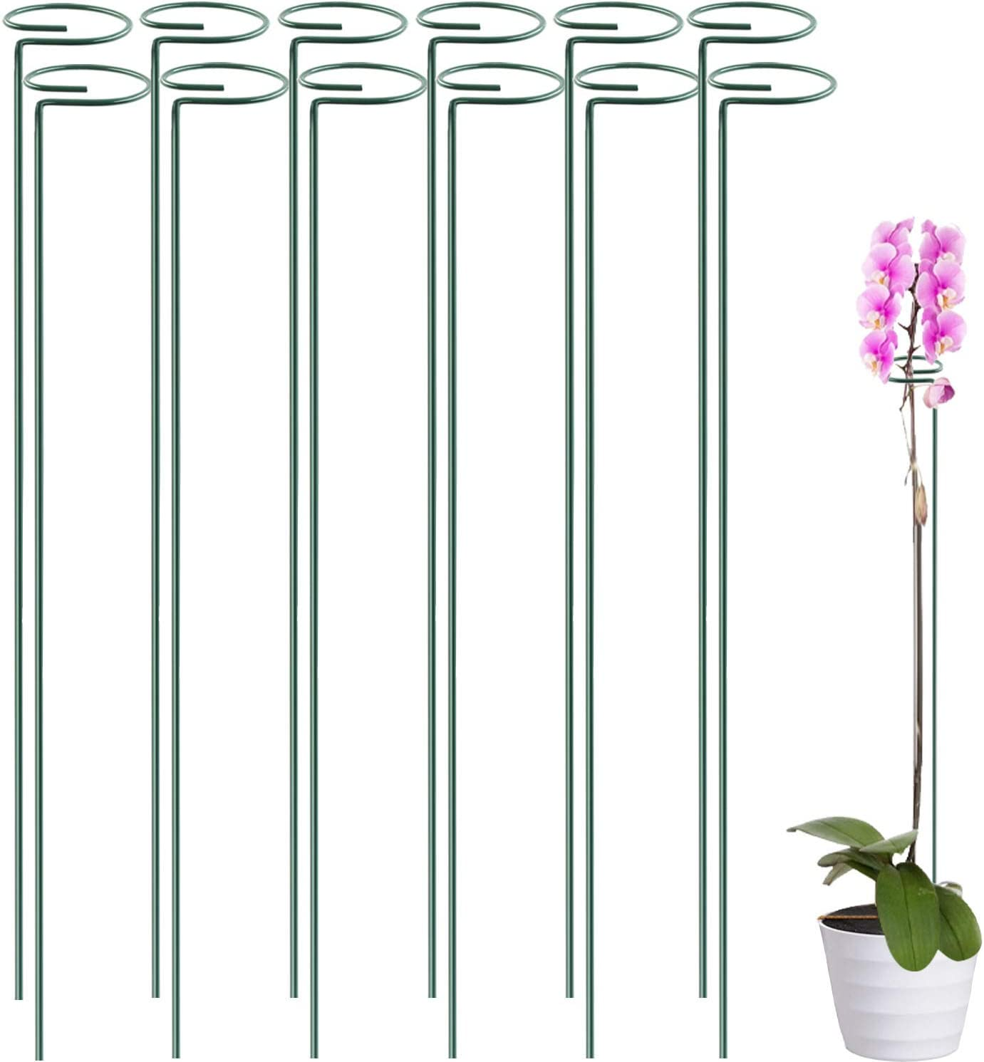 12 Pack 36 inch Plant Support Stakes,Single Stem Plant Support Stake Single Plant Stem Garden Flower Support Stake Steel Plant Cage Support Ring for Gladiolus Iris Dahlia Amaryllis Rose Lily Peony